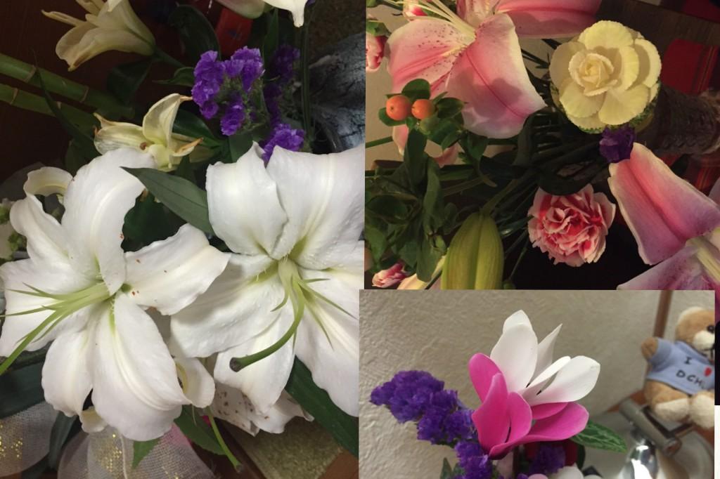 新年 お花